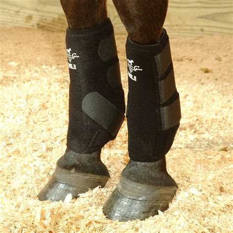 shoes for horses medicine boots horses images