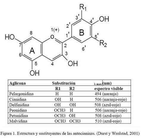 Antocianinas Estructura Quimica De Los Colorantes L