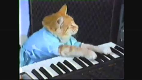keyboard cat tutorial play him off keyboard cat hd youtube