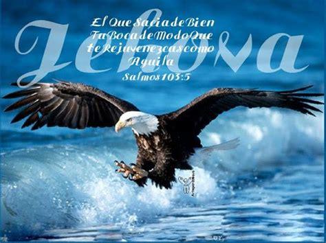 Imagenes Reales Cristianas | imagenes cristianas de aguilas jpg imagenes cristianas com