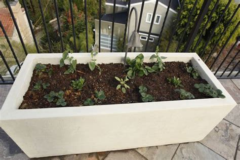 Planter Box In Front Of House by Various Concept Of Concrete Planter Boxes For Home