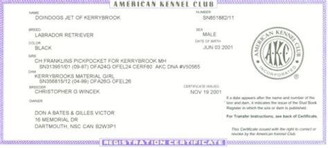 akc puppy registration doindogs jet of kerrybrook cd