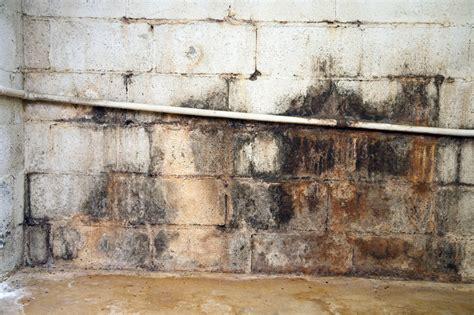 Keller Unter Wasser Trocknen by Keller Streichen 187 Der Gro 223 E Ratgeber Mit Vielen Tipps