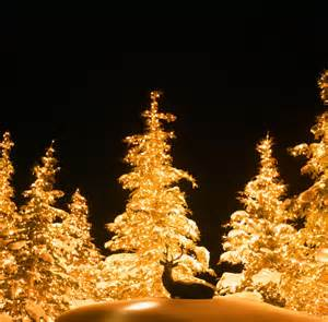 residential christmas lights installation utah brite nites