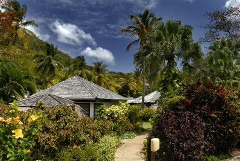 east wind cottage superior garden cottage picture of east winds inn gros islet tripadvisor