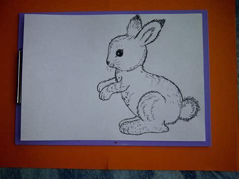Wie Malt Einen Hasen by Zeichnen Lernen F 252 R Anf 228 Nger Wie Malt Einen Hasen