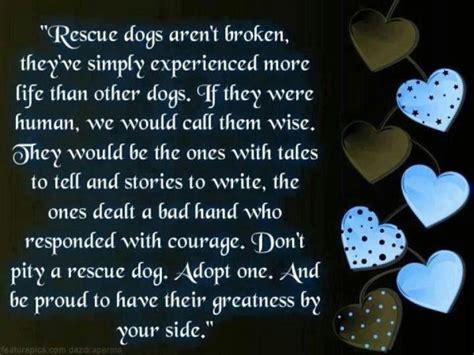 rescue quotes rescue poems and quotes quotesgram