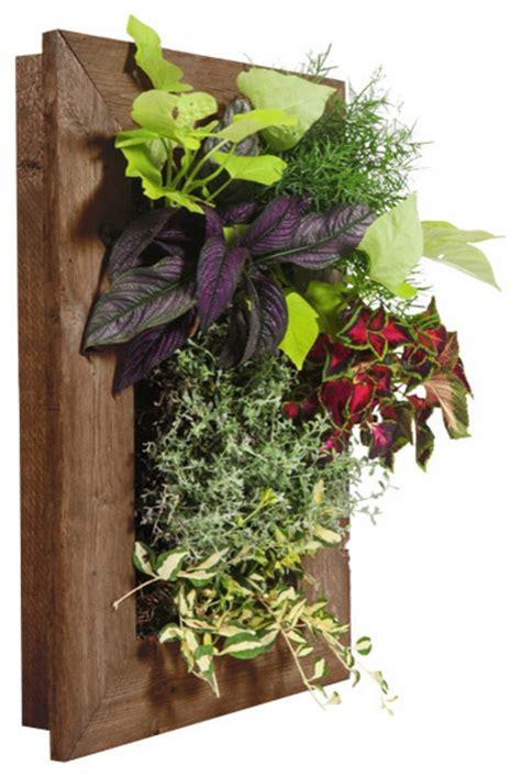 grovert wall planter ghostwood indoor