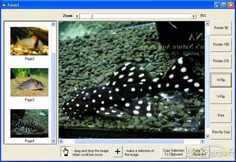 tiff image free tiff image fax viewer activex
