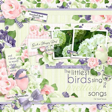 Lets Hear It For The Birds by Let S Hear It For The Birds
