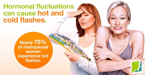 Symptoms Of Detoxing Heat Flashes by And Cold Flashes