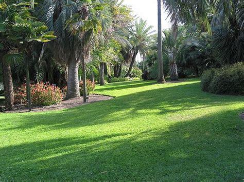 botanical garden in pasadena botanical garden in pasadena jim mcconnell photography