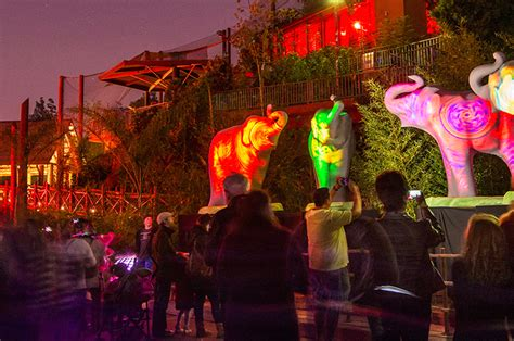 zoo lights zoo discount code la zoo lights discount tickets 7 50 2 free