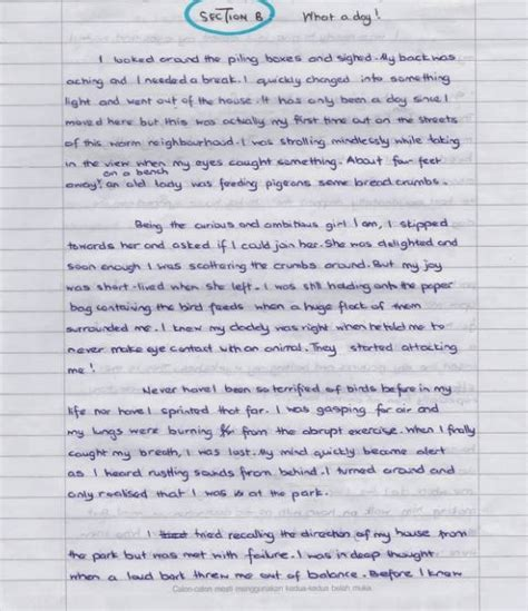 essay writing my friend writing a character sketch essay top rated