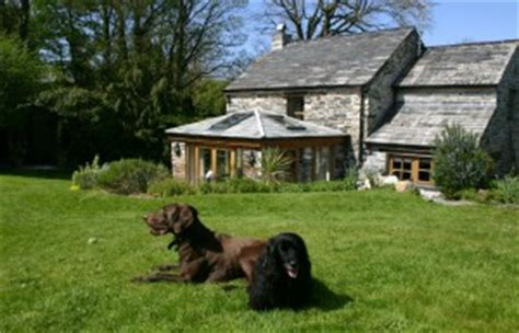 Cottages In Cornwall With Dogs by Friendly Luxury Cottage In Cornwall Rookys Nook