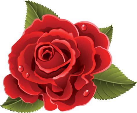 imagenes de rosas rojas vintage flores rosas rojas 86 png 800 215 661 vectores