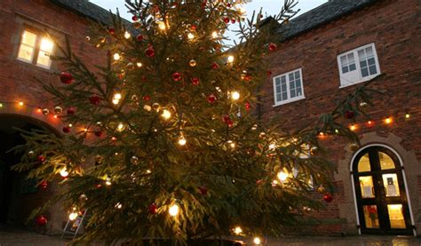 sherwood forest tree dressing christmas lights switch on