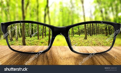 clear forest glasses on background blurred stock photo