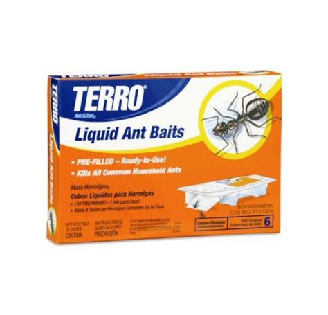 how to get rid of ants wasps spiders and other insects