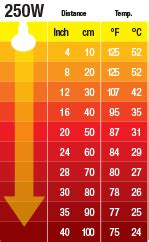 exo terra sun glo basking l 100w oule chauffante en c 233 ramique pour terrarium 250 watts