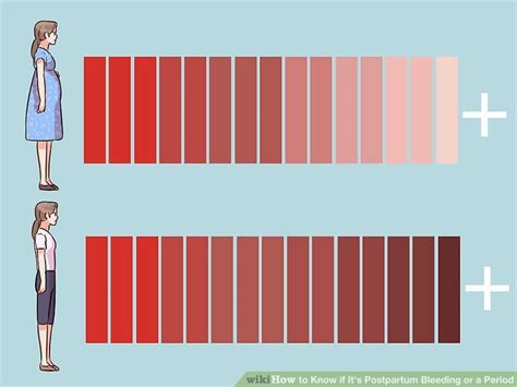 what color should period blood be how to if it s postpartum bleeding or a period 10 steps