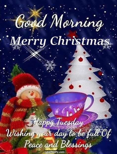 good morning merry christmas happy tuesday pictures   images  facebook tumblr