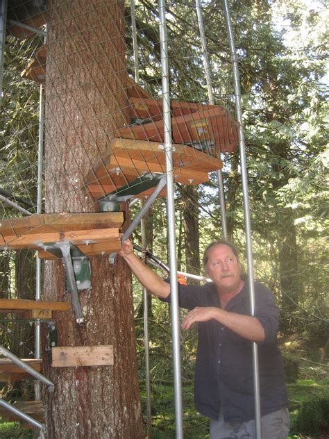 Easy To Build Treehouse - cedar creek treehouse a gem in the ashford woods the mountain news wa