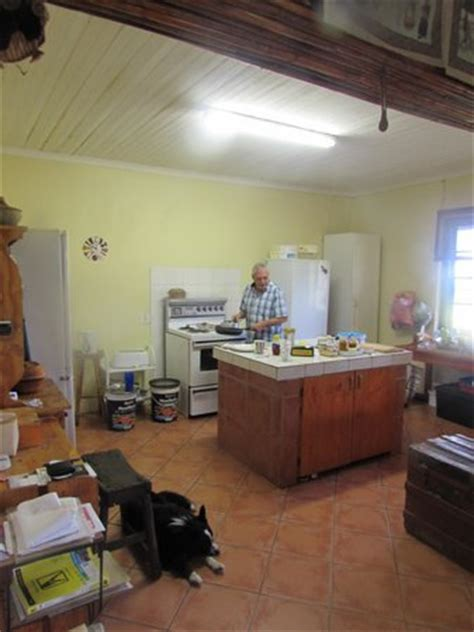 Masterchef Kitchen Location by A Carved Hippo In The Owner S Living Room Bild Khaya