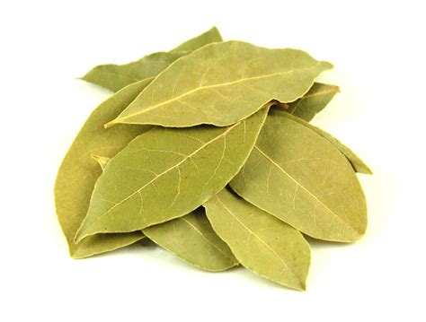 the great bay leaf hoax general topics chowhound