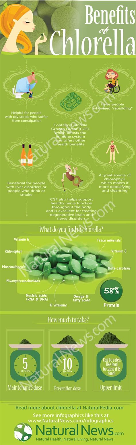 Spirulina Usa Suplement Protein benefits of chlorella high in protein and omega 3