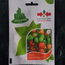 Benih Kangkung Bangkok Lp1 cara membuat tanaman hidroponik dari botol aqua bekas