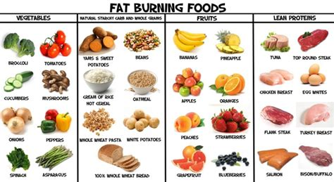 how to eat healthy lose weight newhairstylesformen2014 com best healthy foods you should eat to lose weight
