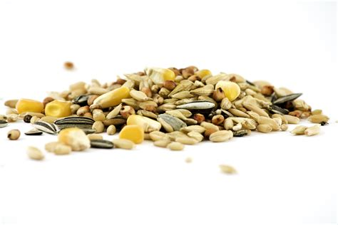 Healthy Seed Bar healthy nut and seed bar recipe motive8