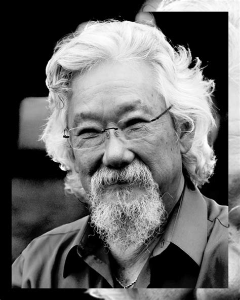 David Suzuki Foundation Montreal David Suzuki C2 Montr 233 Al