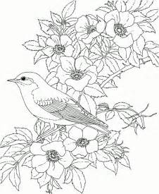 free coloring pages for adults printable to color coloring pages coloring pages printable free free