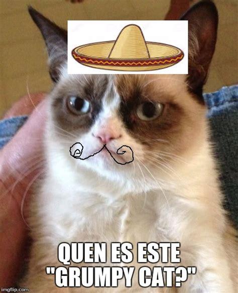 Grumpy Cat Meme Maker - grumpy cat meme imgflip