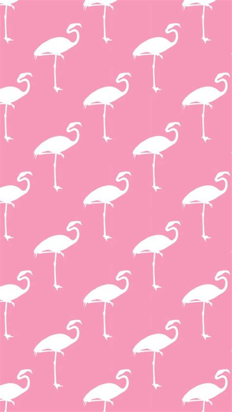 funky pattern iphone wallpaper free iphone wallpaper flamingos silver spiral studio