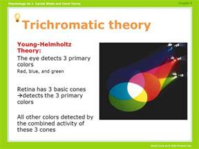 trichromatic theory of color vision definitions sensation perception ppt