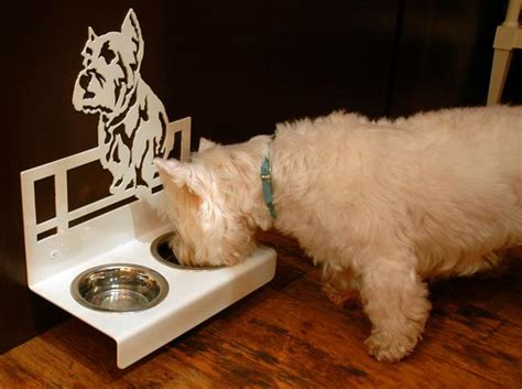 lettiere automatiche per gatti ciotole speciali per cani speciali pets design