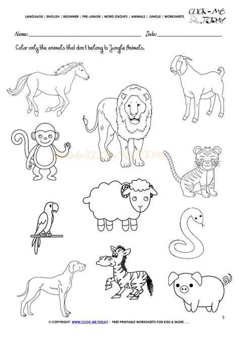 Jungle Animals Worksheet Activity Sheet Color 5 Activity Sheets For