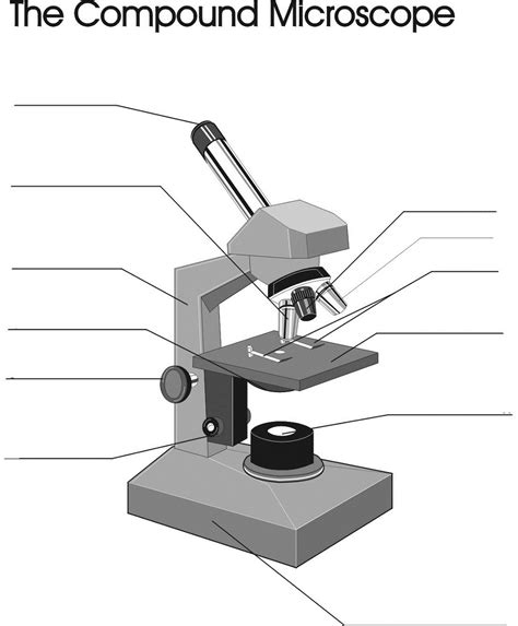 diagram of microscope microscope diagram to print diagram site