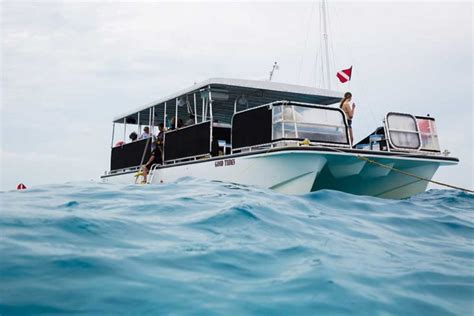boat cruise key west florida coral reef tours cruises coral reef snorkeling