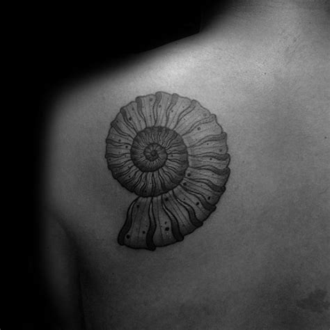 ammonite tattoo 40 ammonite designs for fossil ink ideas