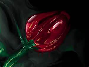 Rose In Glass by Wallpapers Glass Rose Wallpapers