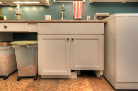 Kitchen Faucet With Spray by Pet Friendly Laundry Room Contemporary Laundry Room