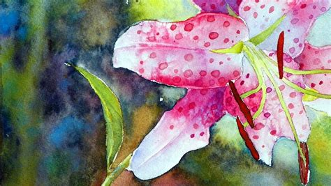 watercolor water lily tutorial how to paint the rubrum lily in watercolor youtube