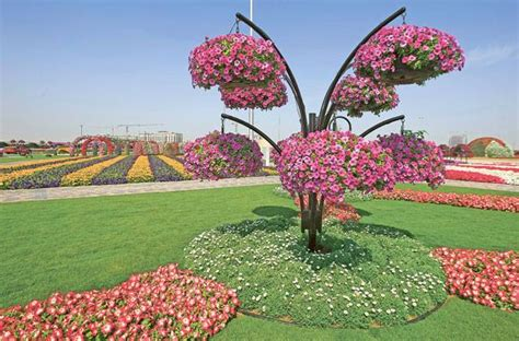 florist jobs in dubai dubai miracle garden others forum