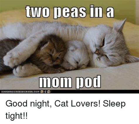Two Peas In A Pod Meme - 25 best memes about good night cat good night cat memes