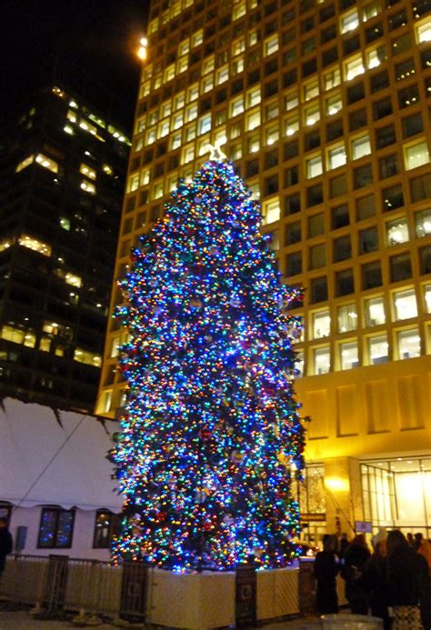 dsley plaza christmas tree winter things to do in chicago christkindlmarket oinkety