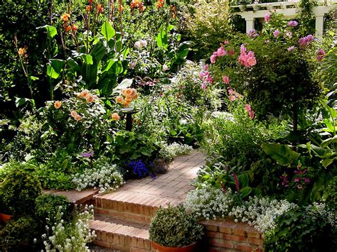 Small Cottage Gardens by The Noe Valley Voice May 2008